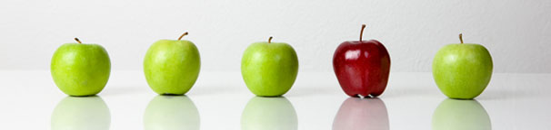 These apples help market our pay for action Internet Marketing Services